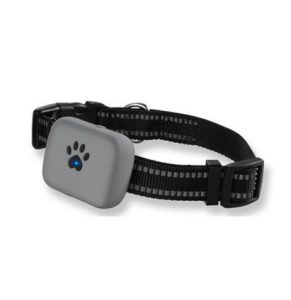 Dog tracking system