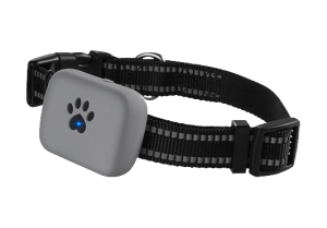 pet gps tracker no monthly fee