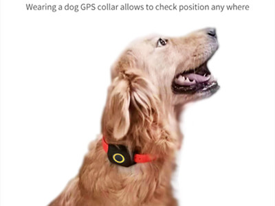 How to use istartek animal gps tracker?
